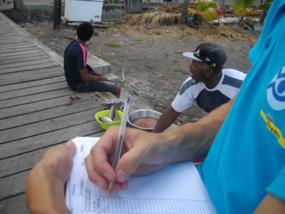 Estimation d'un débarquement en Martinique à Belle Fontaine